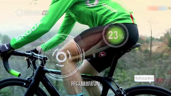 骑自行车腿会变粗吗,骑自行车会不会腿粗