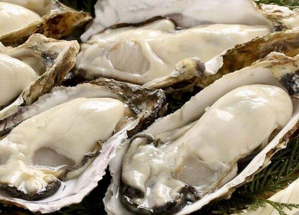 海蛎子药用价值有哪些