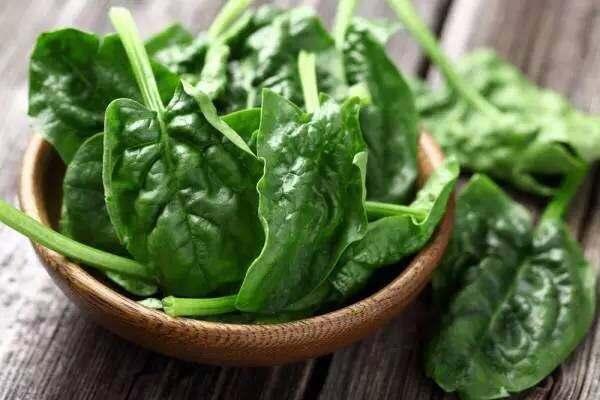 绿叶蔬菜的12个健康好处