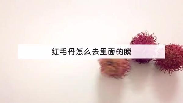 红毛丹孕妇可以吃吃吗,红毛丹和牛奶可以同吃吗