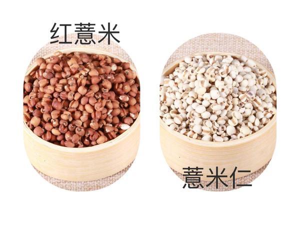 赤小豆薏米减肥功效有哪些