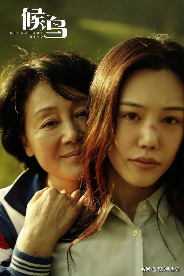 王姬主演过的电视剧有哪些