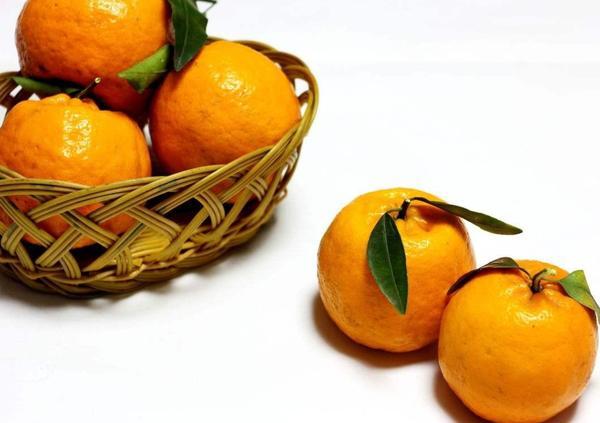 橘皮甘草汤的功效与作用