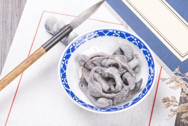 肠痈溃烂汤的功效与作用