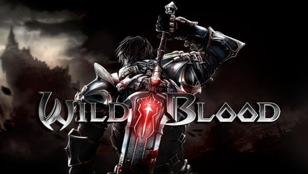 狂野之血完美解决无法游戏的方法