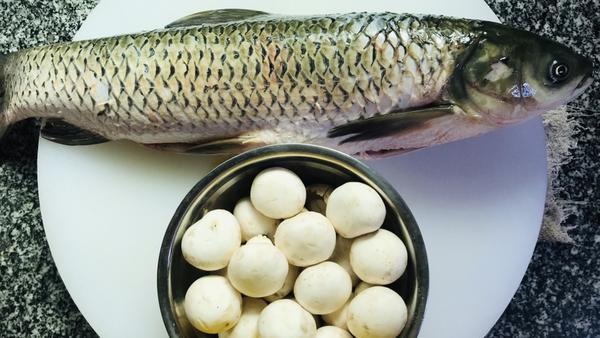 鱼和蘑菇能一起吃吗,鱼炖蘑菇的做法