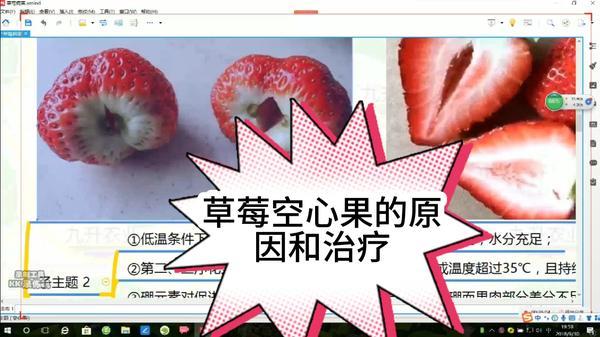 草莓是中间空心好还是实心好,草莓中间空心是怎么回事