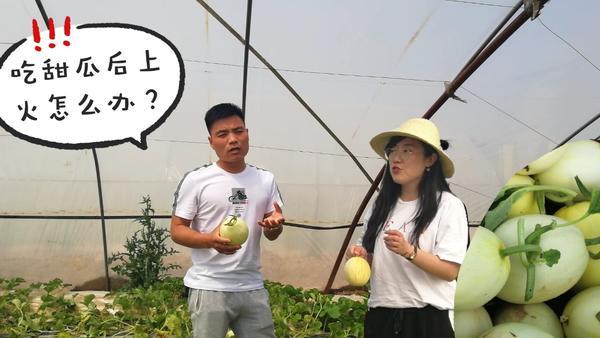 香瓜吃多了会上火吗,吃香瓜要注意什么