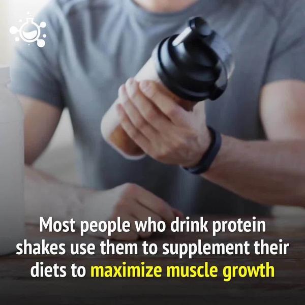 非训练日要吃蛋白粉吗,非训练日吃多少蛋白粉