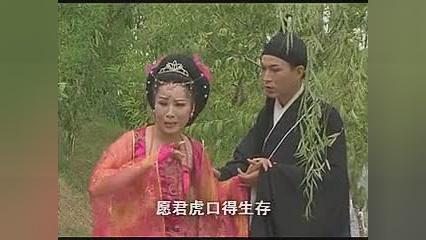 黄梅戏《农夫娶娘娘》