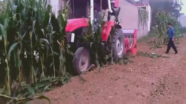 茎穗兼收玉米收割机
