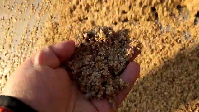小型洗砂機