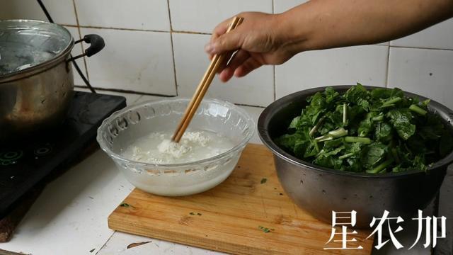 汉中浆水菜图片