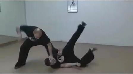 民间传统武术高手,讲解螳螂拳实战技巧,威力无穷_网易视频