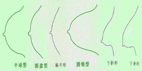 中国女性的理想乳房形状:乳房10个标准形态(图)-第3张图片-IT新视野