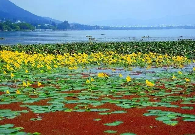 到西昌的 西昌周边旅游景点大全-元珍旅游