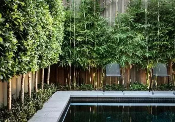 庭院围墙设计_手机搜狐网