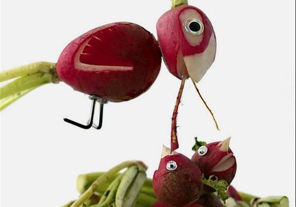 蔬菜可以做什么小动物