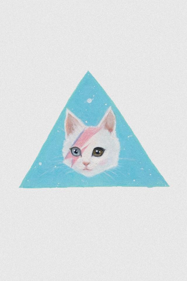 keiti貓圖片手機壁紙