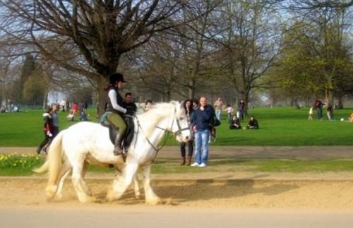 全球骑马圣地汇总,世界那么大 骑马去看看