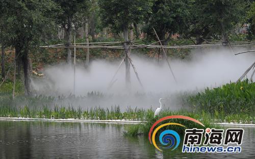 三亚新岸湿地公园等4大公园正在深化方案设计