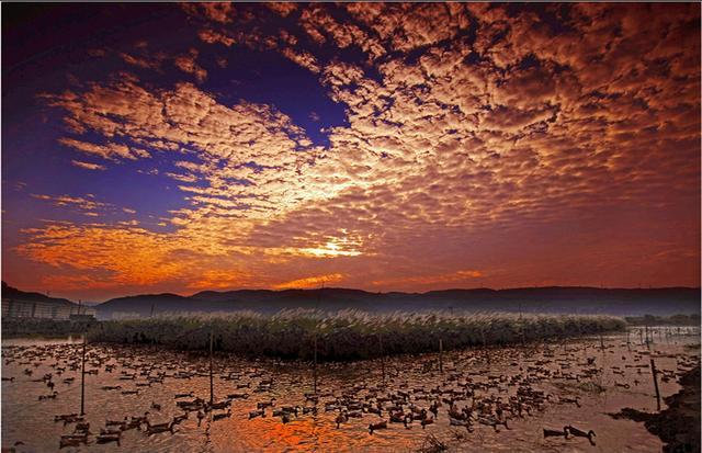 漩门湾农业观光园