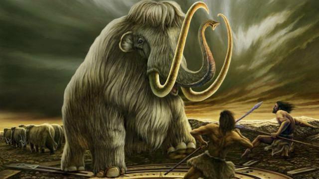 什么?听说你们要复活一头猛犸象!