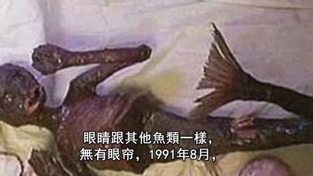 毛泽东词里提到的彭阳,竟然发现一座美人鱼古墓