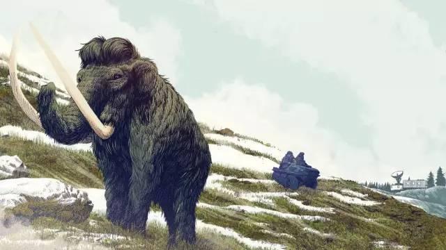 疯狂么?科学家为何要复活已灭绝的长毛猛犸象?