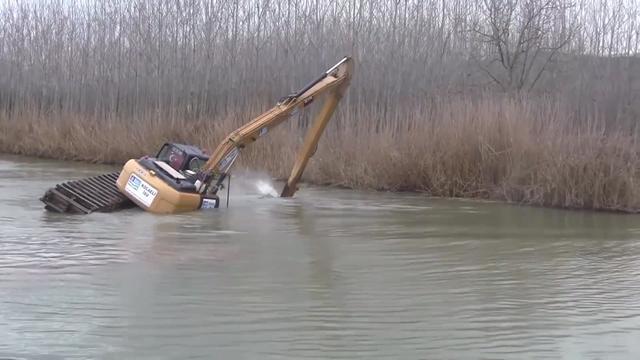 挖机挖了29斤蛇死了