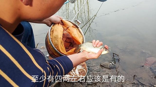 鱼竿硬度和调性对照表