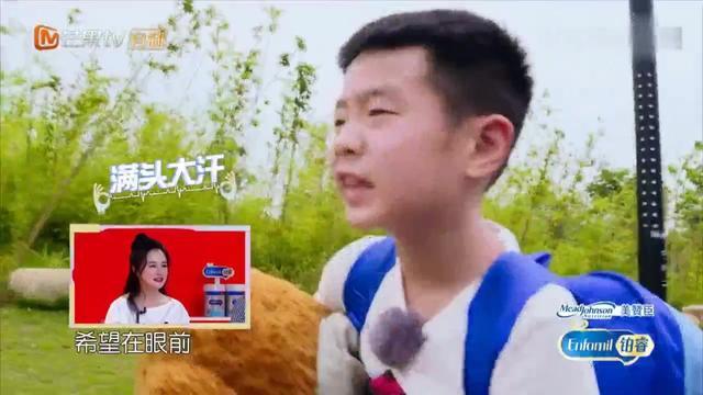 邹明皓毅力超强:我不坐车想妈妈想哥哥轩轩冉莹颖落泪