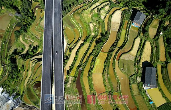 桂三高速本月26日通车 桂林到三江仅需两小时(图)|手机广西网