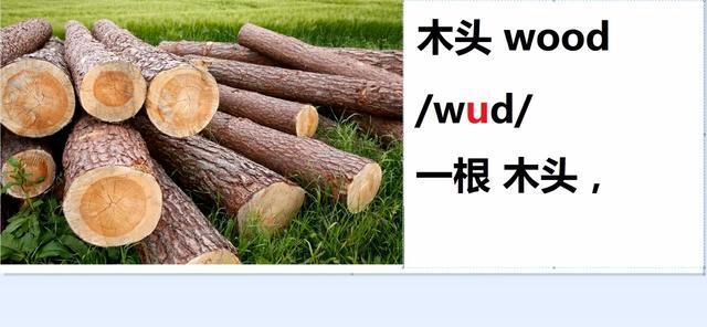 木材树种名称中英文、拉丁文对照 _木业技术中心_中国木业信息网