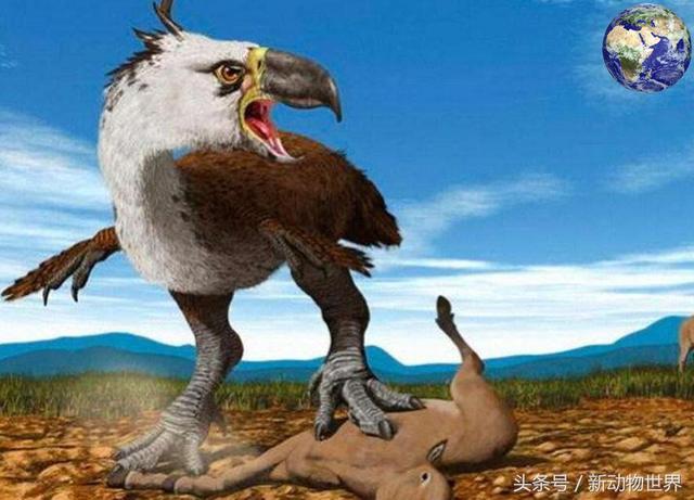 哈斯特巨鹰复活
