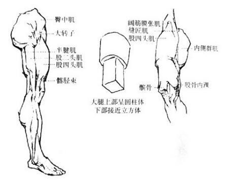 素描布褶画法步骤图_瑞文网