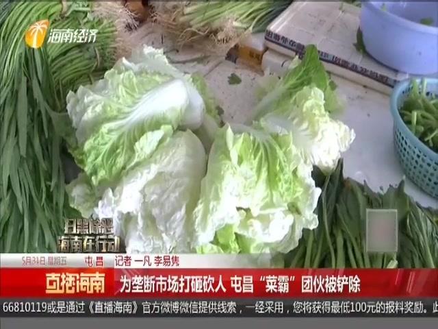 海南省屯昌县何德通案件