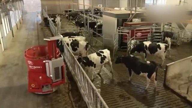 养牛场的规划设计 现代化牛舍设计图 简易圈舍建设_飞扬123