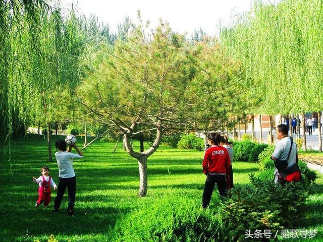 银川中山公园