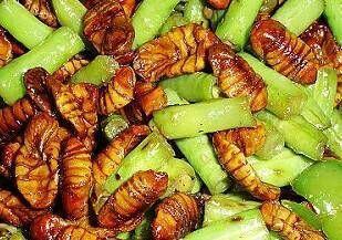 阑尾炎吃什么食物最好