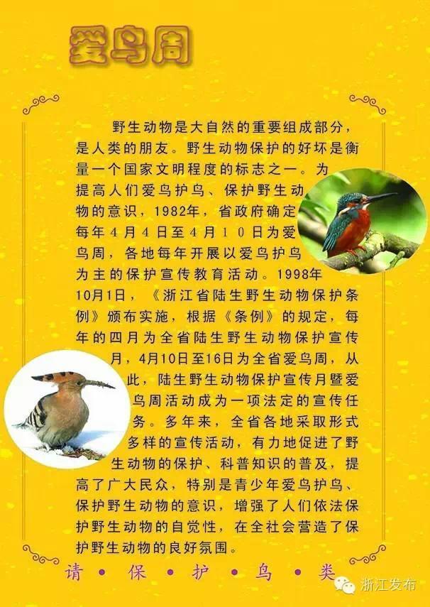 凤尾绿咬鹃飞翔的图片