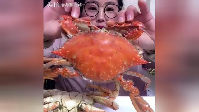 海豚姐姐珍宝蟹VS梭子蟹,这个季节选珍宝蟹,吃海鲜要分季节吃