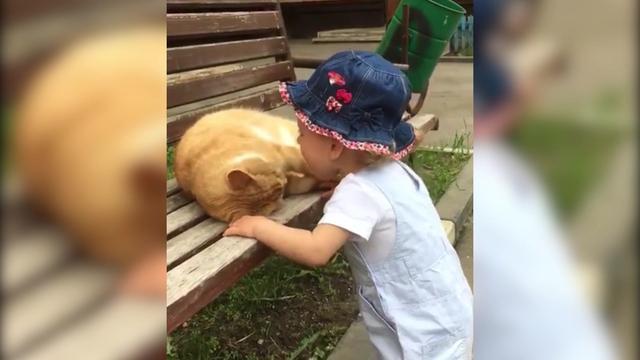 小宝宝咬疼猫咪,它愤怒转身,随后一幕好感动
