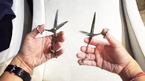 理發剪刀知乎