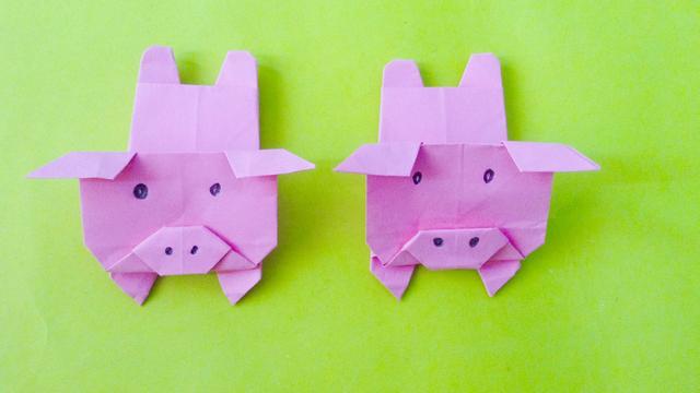 猪猪侠菲菲