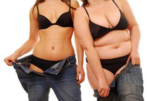 脂肪肌肉含量对比