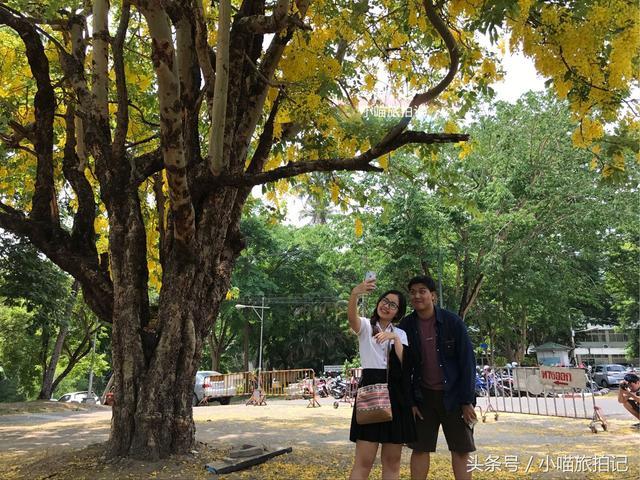 泰国清迈学校图片