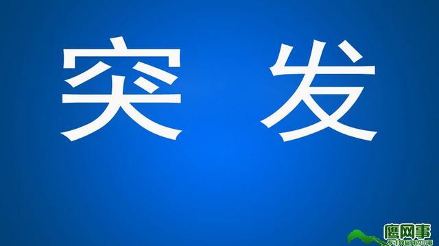 临川车祸新闻