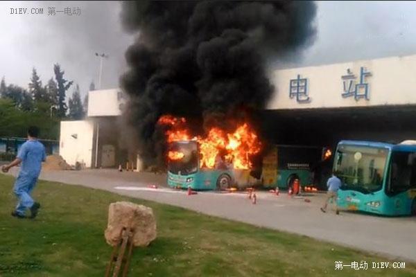 晕!虚荣的比亚迪F3与公交车发生事故(转帖图)_青青岛社区