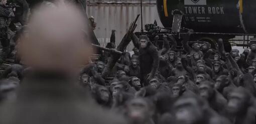猩球崛起3终极之战